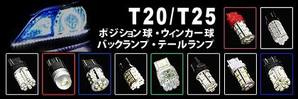 T20 T25
